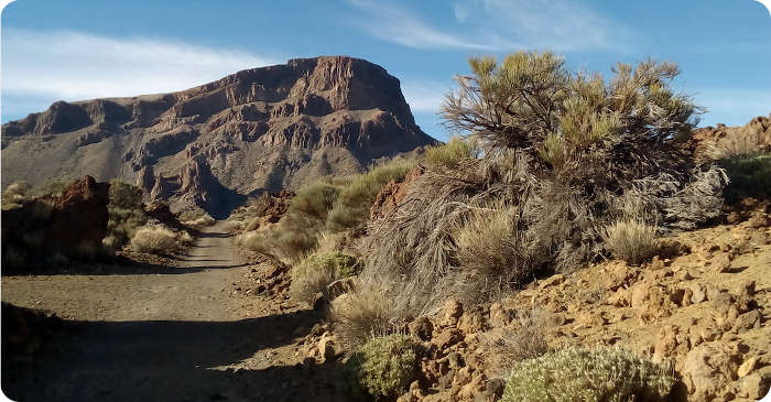 Teide-Nationalpark Teneriffa
